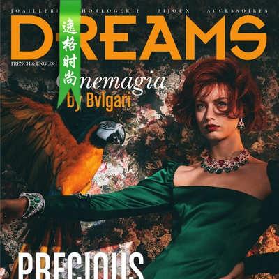 DREAMS 法国女性珠宝配饰专业杂志12月号N1912
