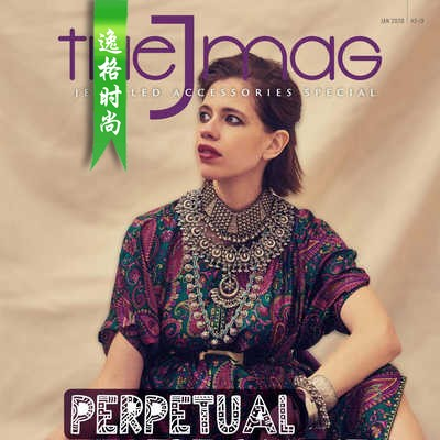 The J Mag 印度珠宝首饰杂志1月号N2001