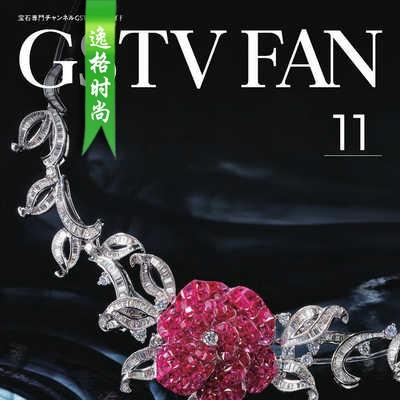 GSTV 日本专业珠宝首饰杂志11月号 N1911